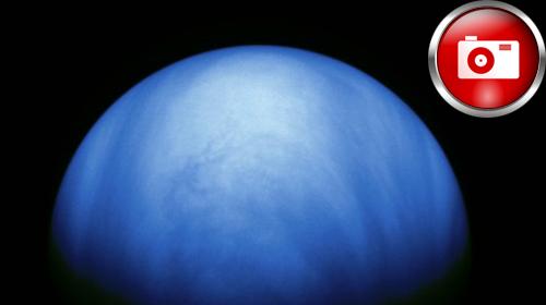 Venüs Gezegeninde Akrep Bulundu
