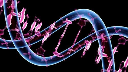 ODTÜ'lüler Yapay Gen Üretti
