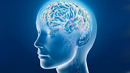Alzheimer'a yol açan neden