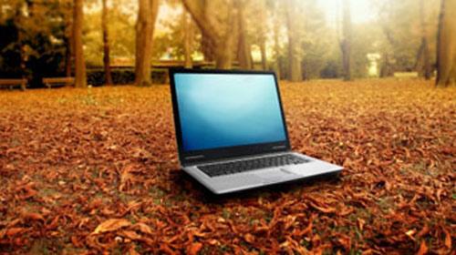İnternet Ağaçları Öldürüyor mu?