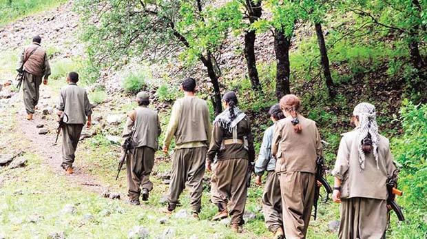 PKK'nın piknik tuzağı bozuldu