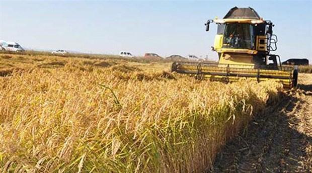 Tarım Bakanı, ülkenin çiftçisinden habersiz!