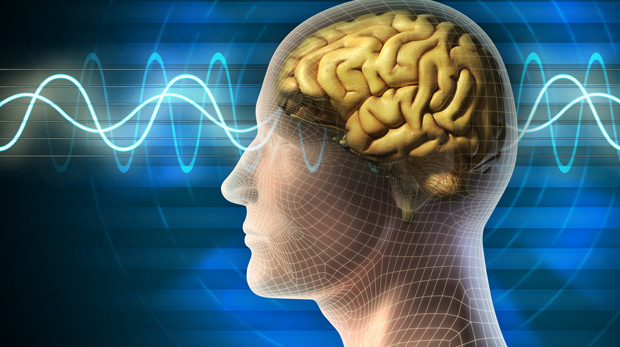 Bilim adamları beyinden beyine iletişim kurmayı başardı