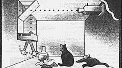 Schrödinger'in Kedisi 80 Yıl Sonra Işınlandı