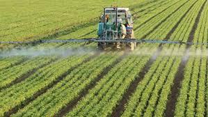 """Tarım Bakanı Pakdemirli'den """"Sudan'da ekim yapın"""" çağrısı"""