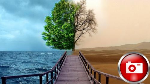 Masaüstünüz İçin 10 Doğa Resmi
