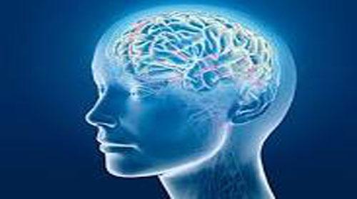 Beynin Şifresini Açıklayan Büyük Buluş