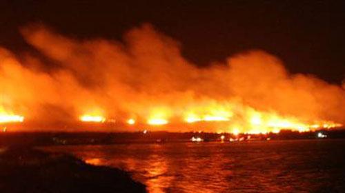 Cunda Adası'nda yangın