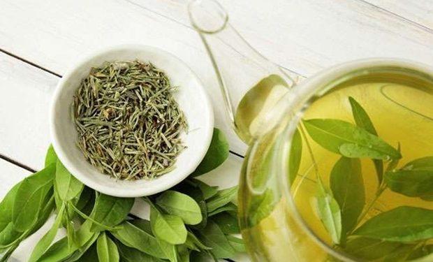 Bitki Çayları'nın Yararları