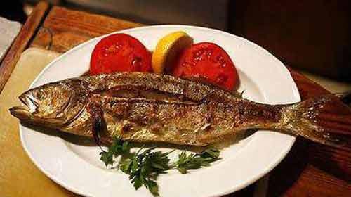Sınava Balıkla Hazırlanın