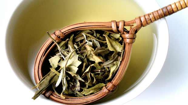 Beyaz çay tam bir mucize!