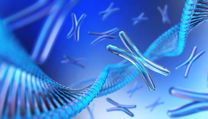 Tüp Bebekte Tüm Kromozom Analizi