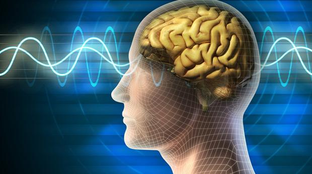 Dahilik beynin sağ tarafında başlıyor