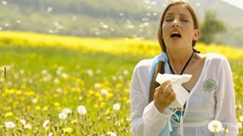 Bahar Alerjisi Neden Patladı?