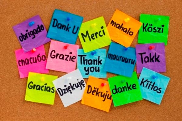 Yabancı dil eğitiminde reform gerekiyor
