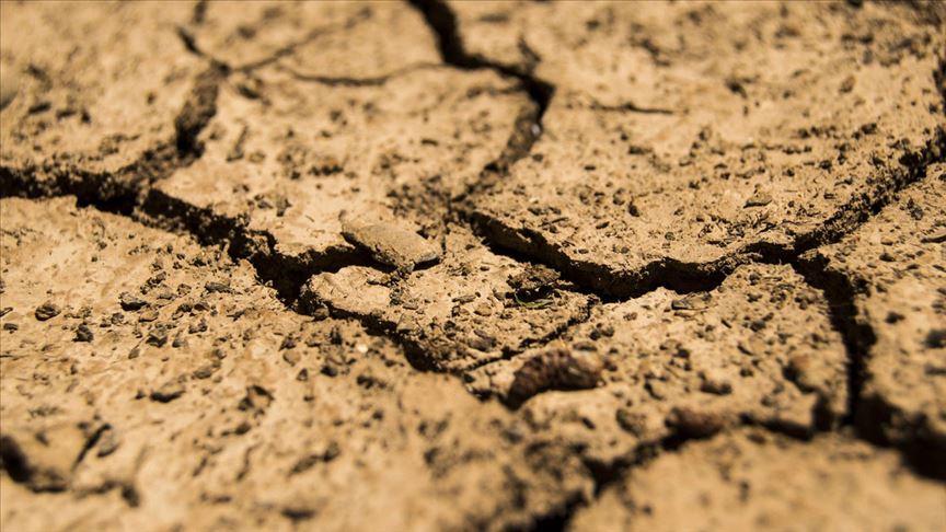 Dünya her yıl 24 milyar ton toprak kaybetmeye devam ediyor