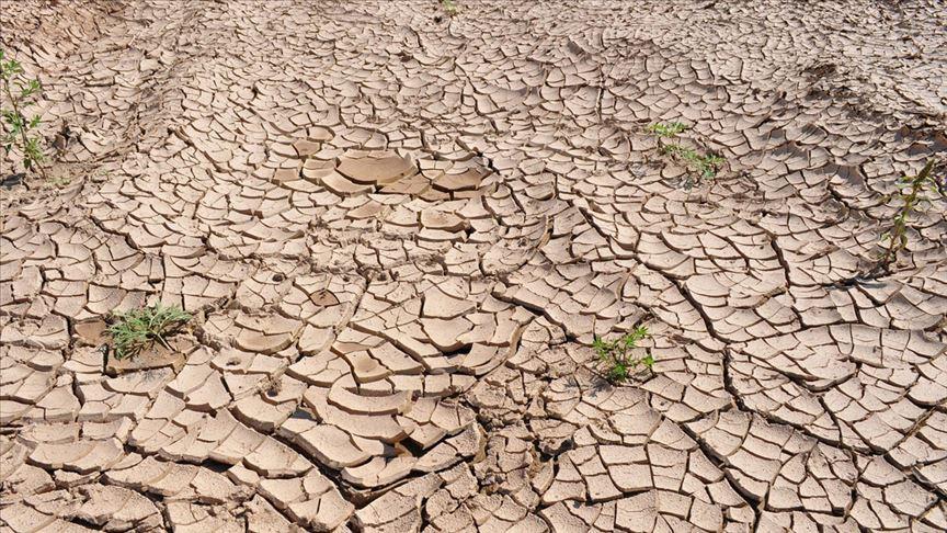 Türkiye'de son 9 yılın en kurak kasım ayı yaşandı