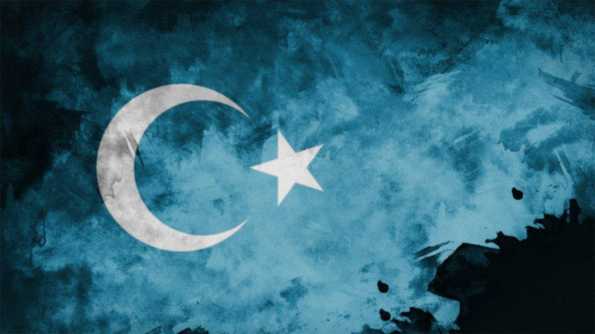 İslam ülkeleri Doğu Türkistan'a sahip çıkmalı