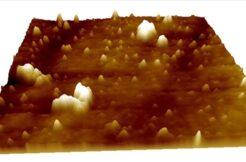 Türk bilim insanları yerli süper mikroskopla Kovid-19'u görüntülemeyi başardı