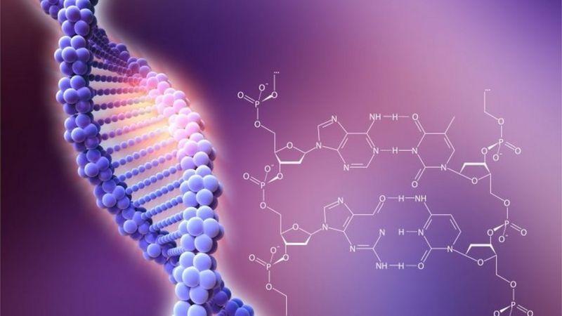CRISPR nedir? CRISPR nasıl keşfedildi?