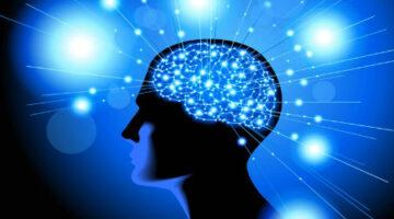 Hafızamız nasıl oluşuyor? Bilgi hafızaya nasıl alınır?